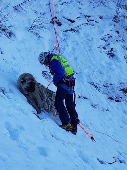 Bergredding redt hond